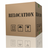 Relocation moving box